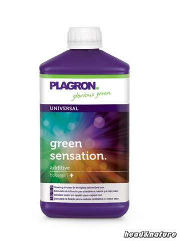 Plagron Green Sensation - Bloom estimulador 500ml